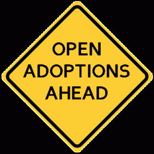 open-adoptions-ahead-300x3002